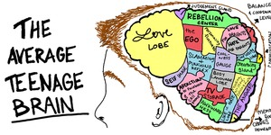 Don't forget to enrol to the presentation on The Teenage Brain!