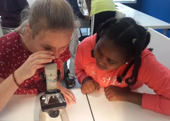 Lessons in Science Discovery